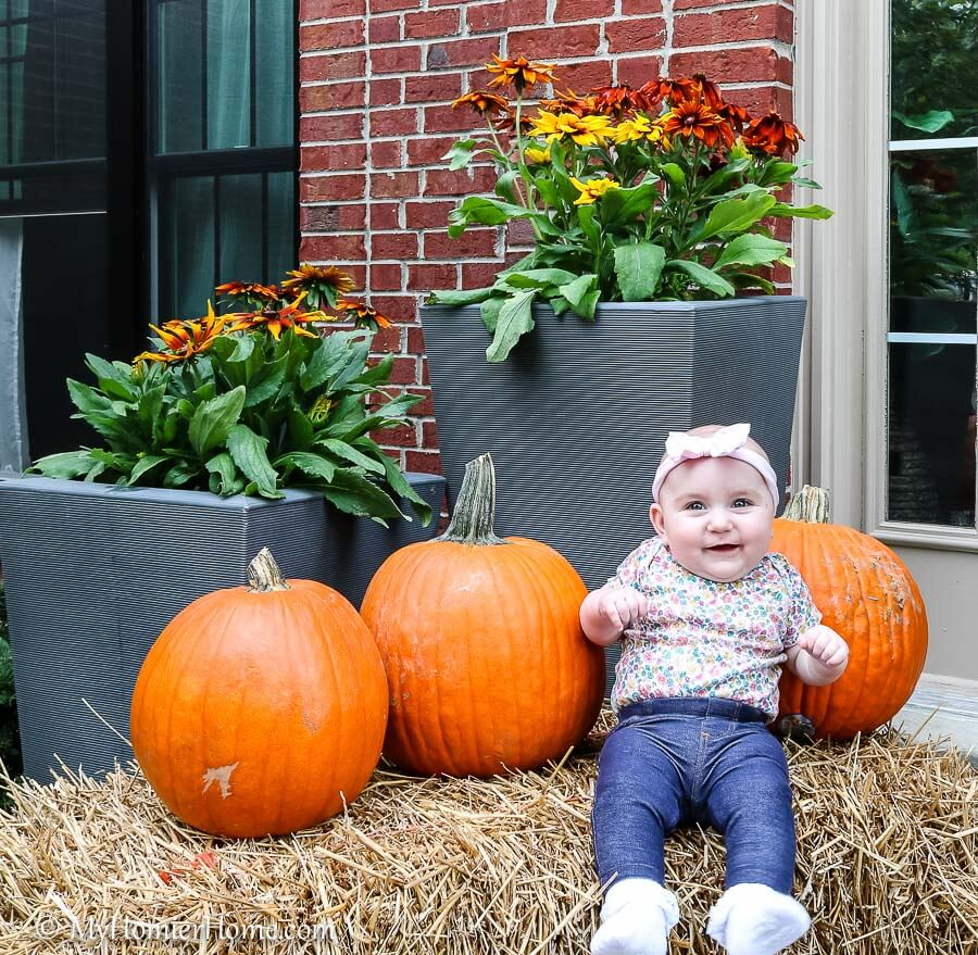 Just your standard baby amongst pumpkins picture!