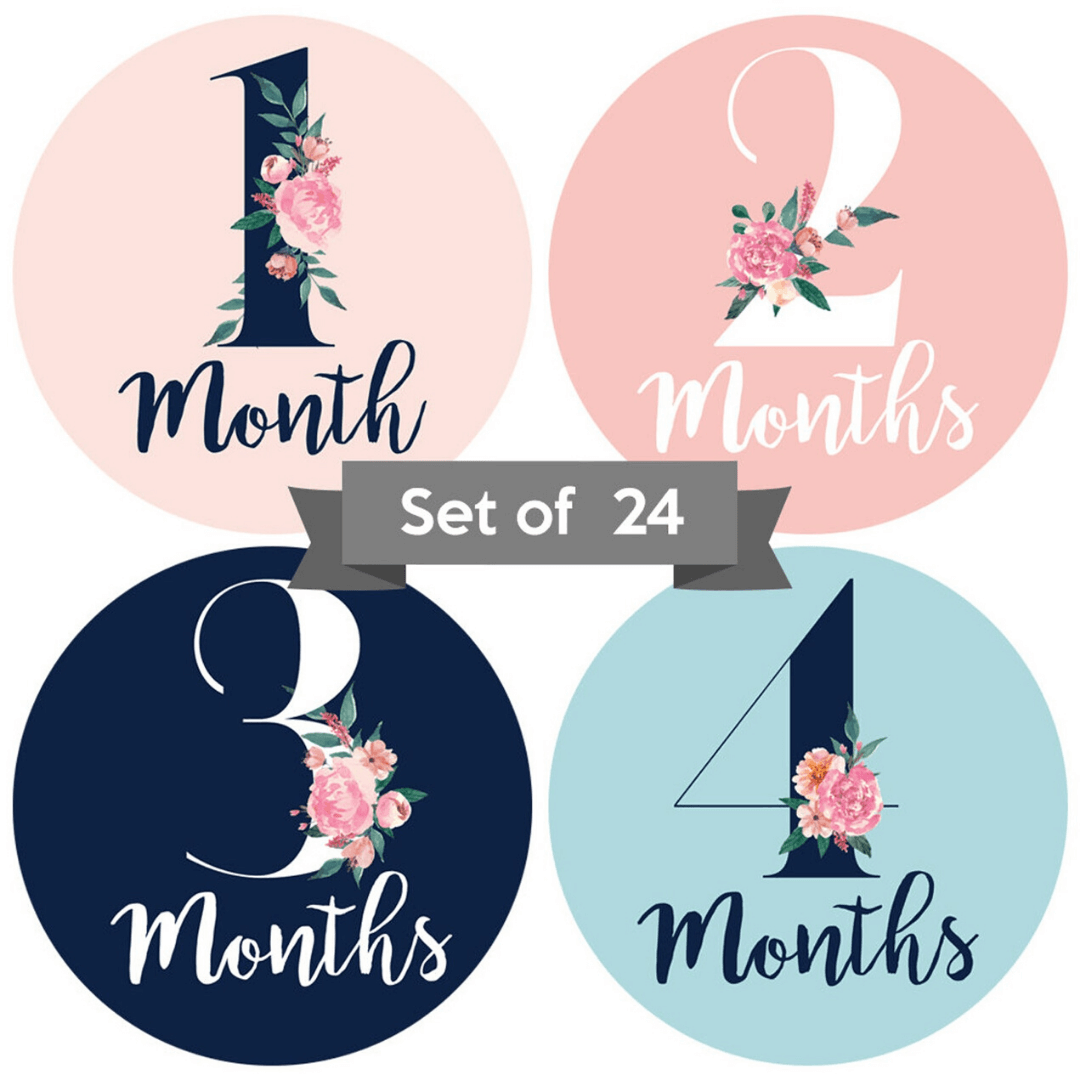 Girl Nursery Decor - Baby Monthly Stickers